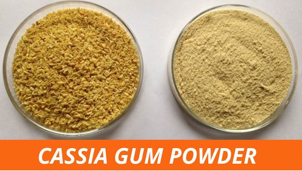 Cassia Gum Powder Alternative for Locust Bean Gum
