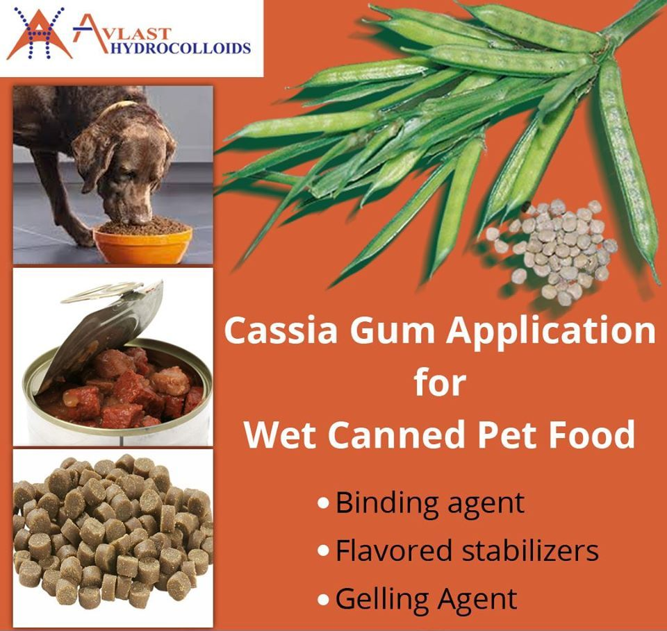 Wet Canned Pet Food