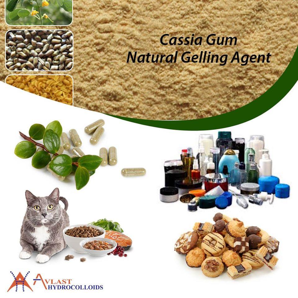 Cassia Gum Natural Gelling Agent