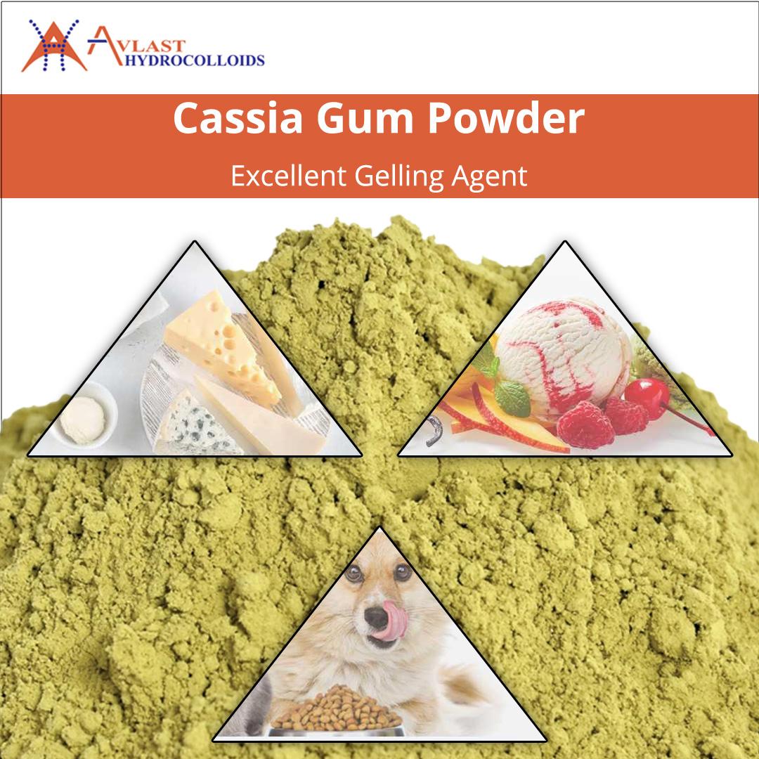Cassia Gum Powder Excellent Gelling Agent